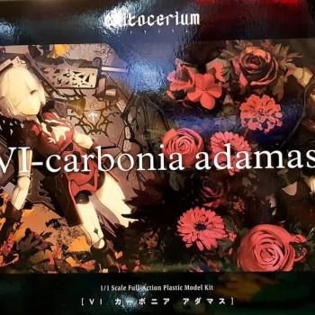 chitocerium VI-carbonia...